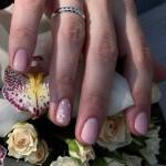 розовый маникюр на коротких ногтях фото