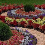 Как правильно расположить растения в цветнике?