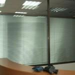 Какие жалюзи выбрать для офиса?