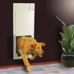 Входные дверцы для домашних животных