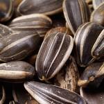 Полезные свойства семян подсолнечника