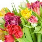Доставка цветов. Порадуйте любимого человека