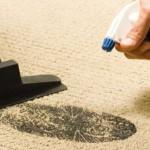 Домашняя и профессиональная чистка ковра