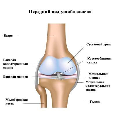 posle-ushiba-kolena