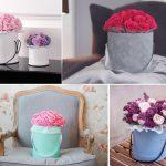 Уход за цветами в шляпной коробке